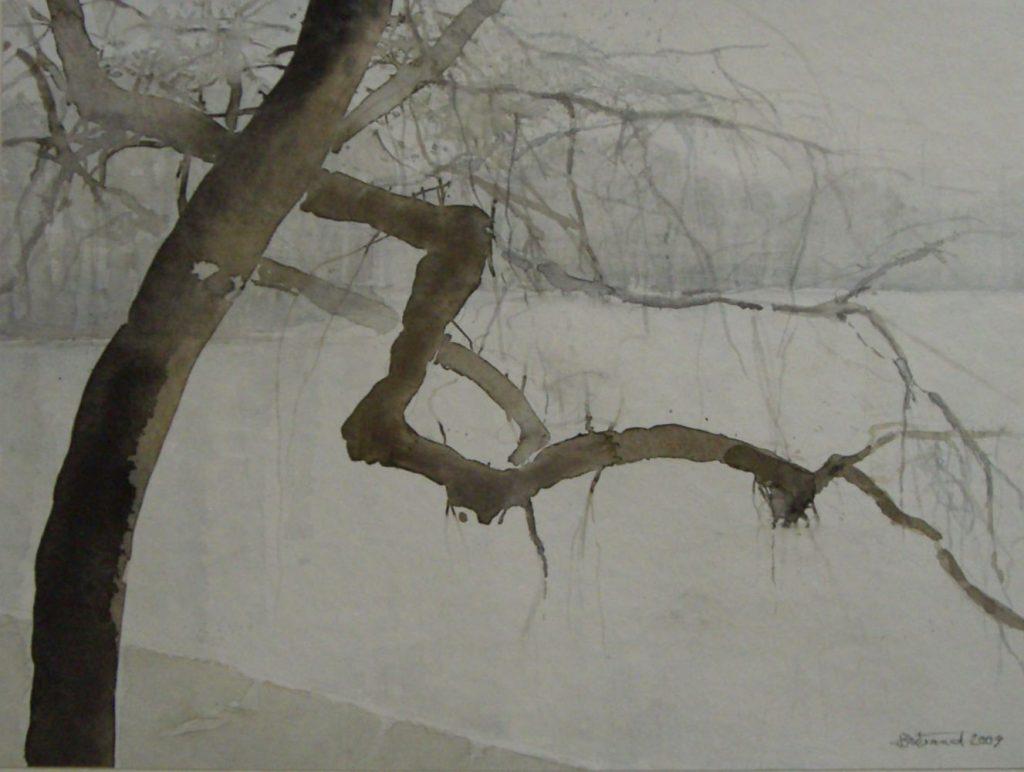 """""""Bizarrer Baum"""" Aquarell 30x40cm"""