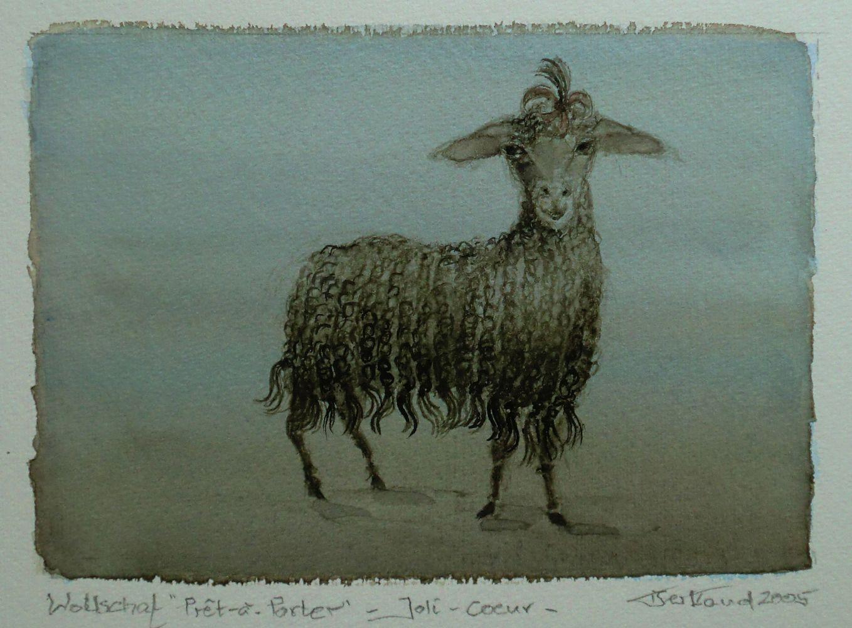 """""""Wollschaf Joli-Coeur"""" Aquarell 12x17cm"""