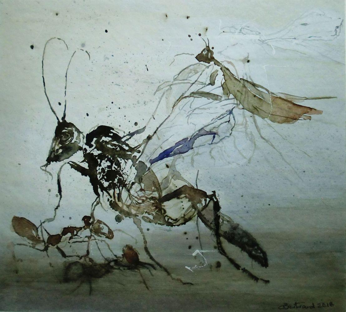 """Insektenwelt""(1) Aquarell 33x36cm"